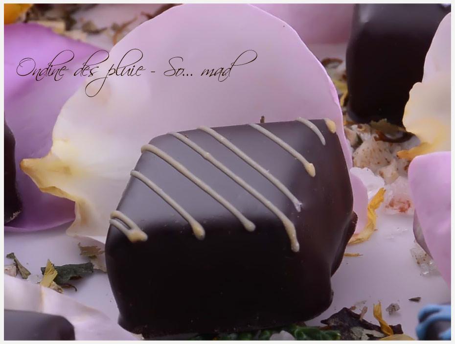 chocolat artisanal en ligne
